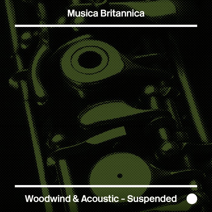 Articlehome woodwindacousticsuspeded aw